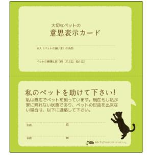Bothsidedcolorcat1