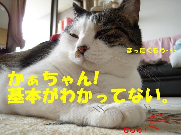 0617_0031_2