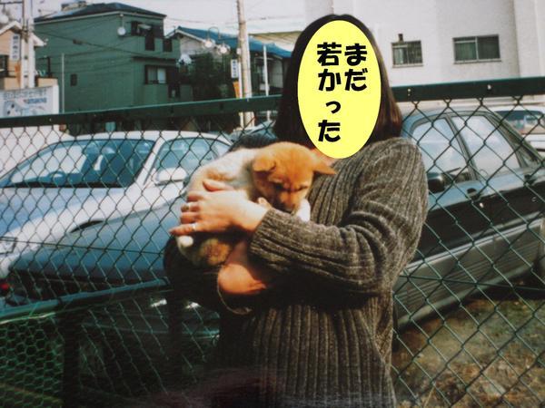 Momo_0041