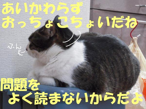 0921_0091