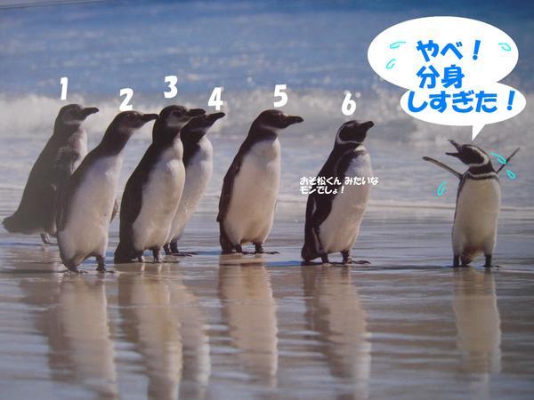220701_0011nico
