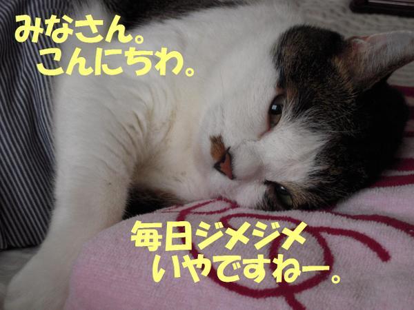 220707_0011