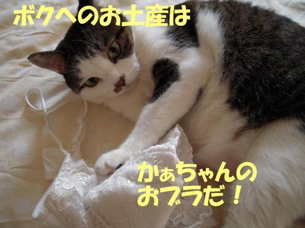220910_0101