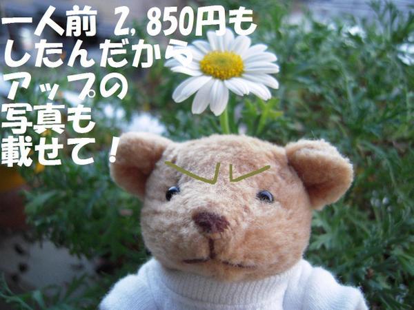 230304_0041