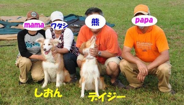 5356_copy1