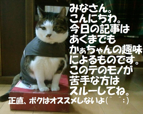 20120109_174211_copy1