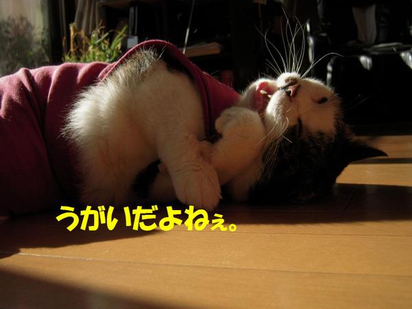 240128_004_copy1
