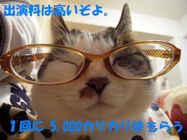 240320_0281