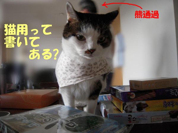 240621_008_copy1