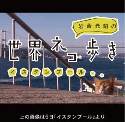 Photo_iwago