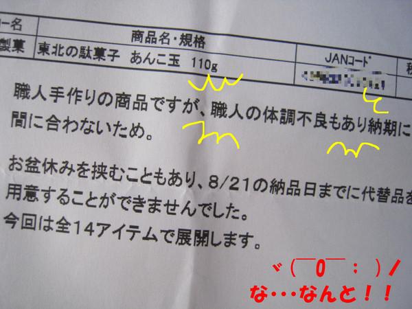 240809_018_copy